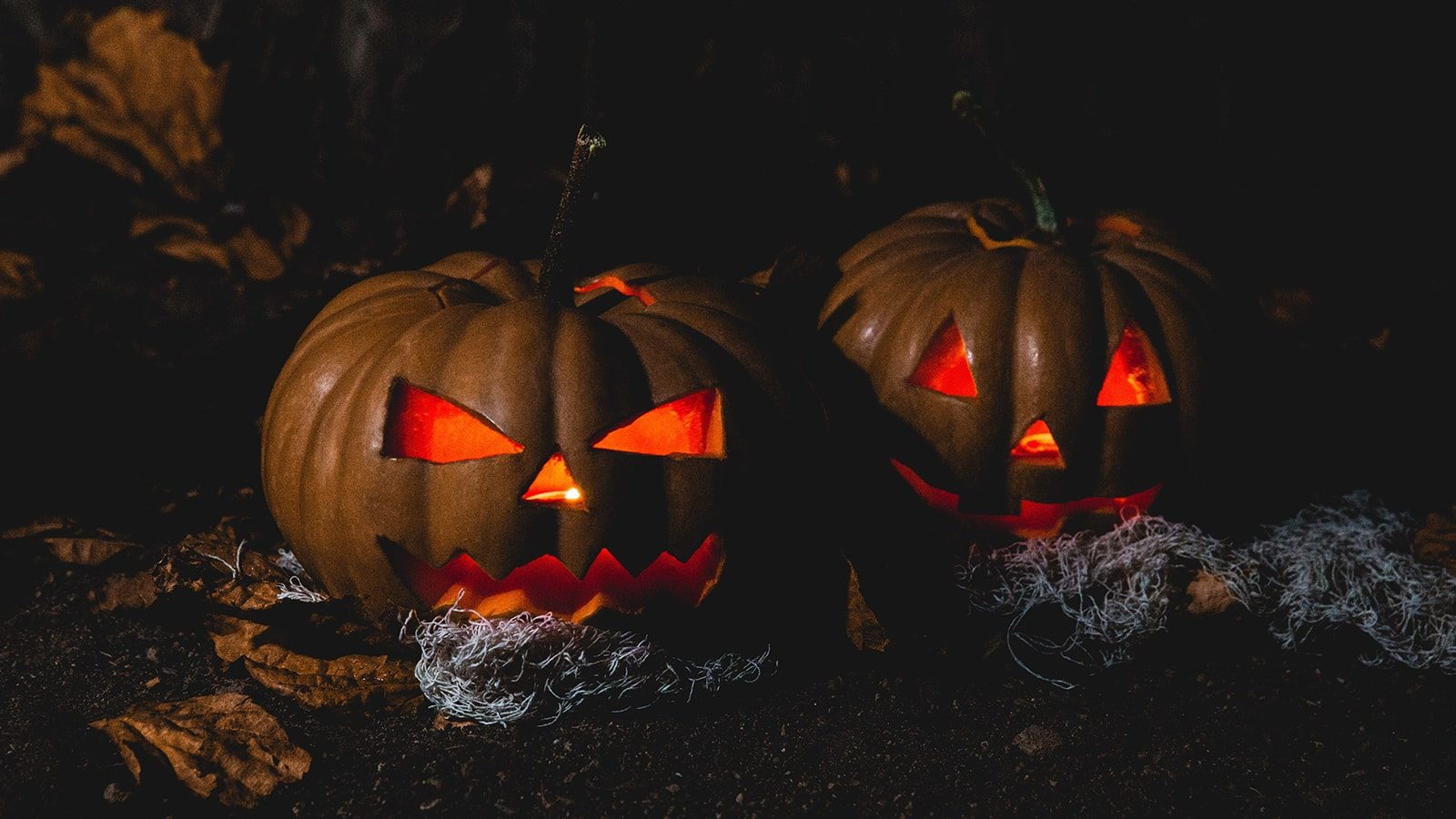 Spooktacular Halloween Jack-O-Lantern Design Ideas to Inspire You this Holiday