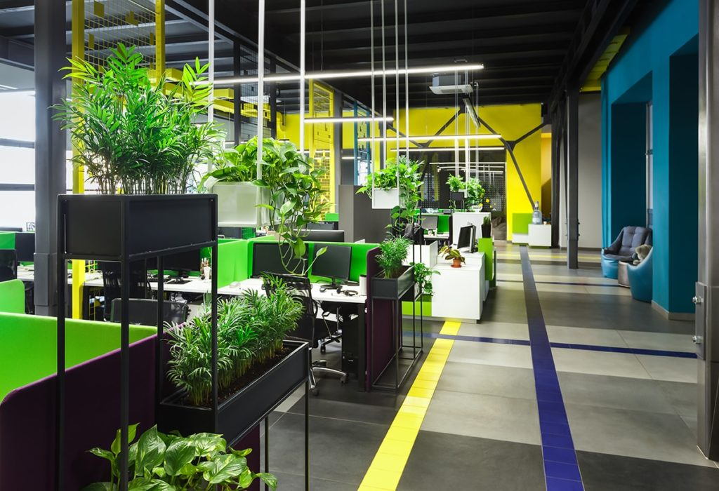 Open office with plants