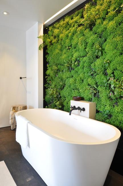 Bathtub Plant Wall