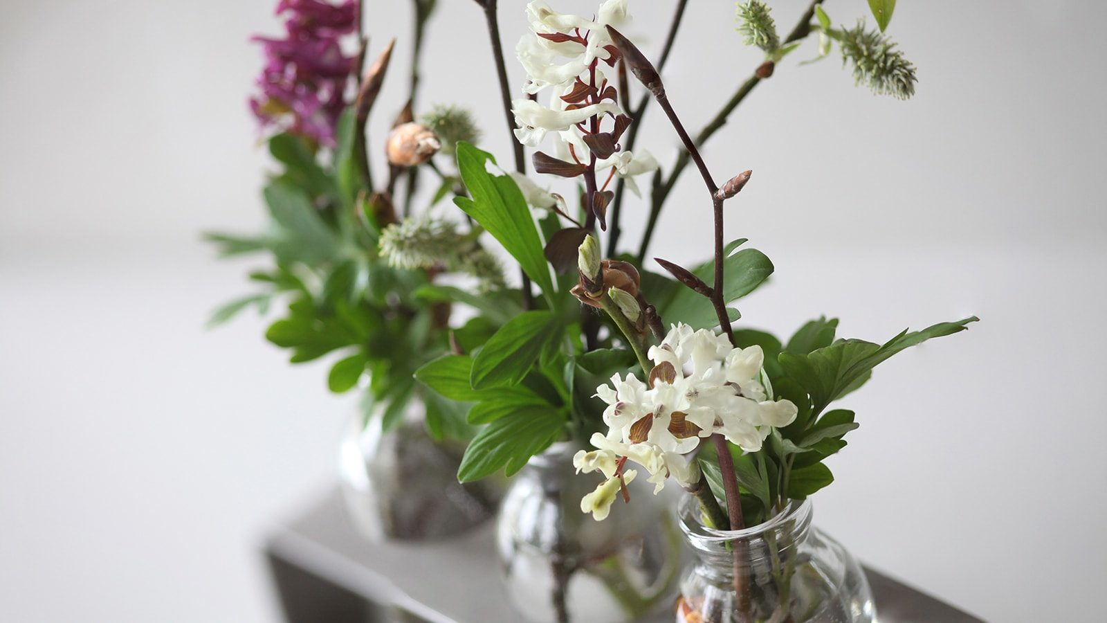 Bring Life into Your Bathroom with Beautiful Houseplants