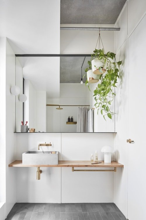 Hanging Plants in Bathroom