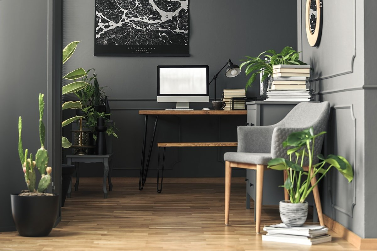Light wood floors and dark walls in home office